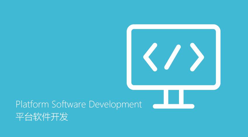 平台软件开发